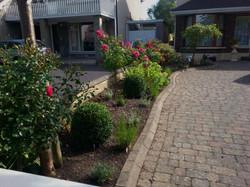 Front garden, Castlenock