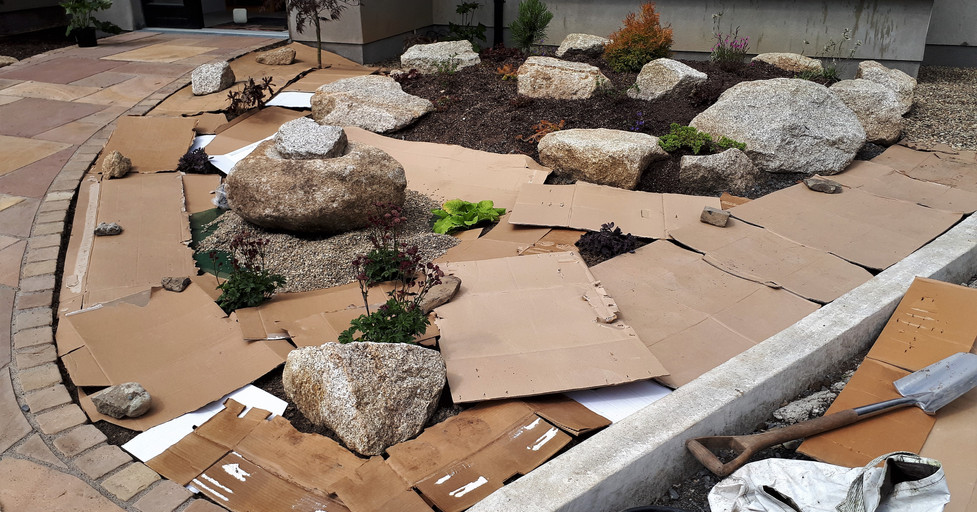 Cardboard natural weed barrier