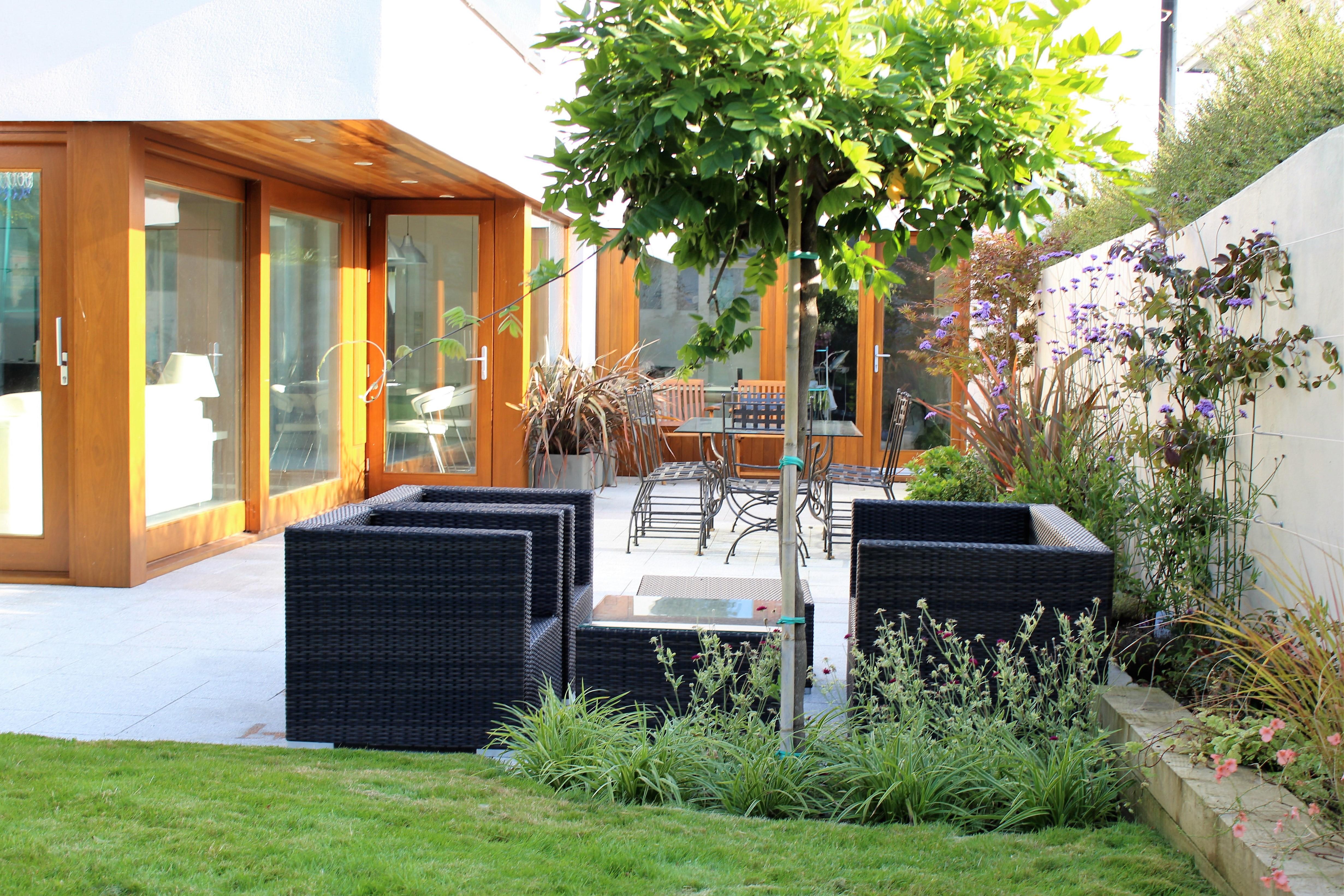Contemporary patio garden