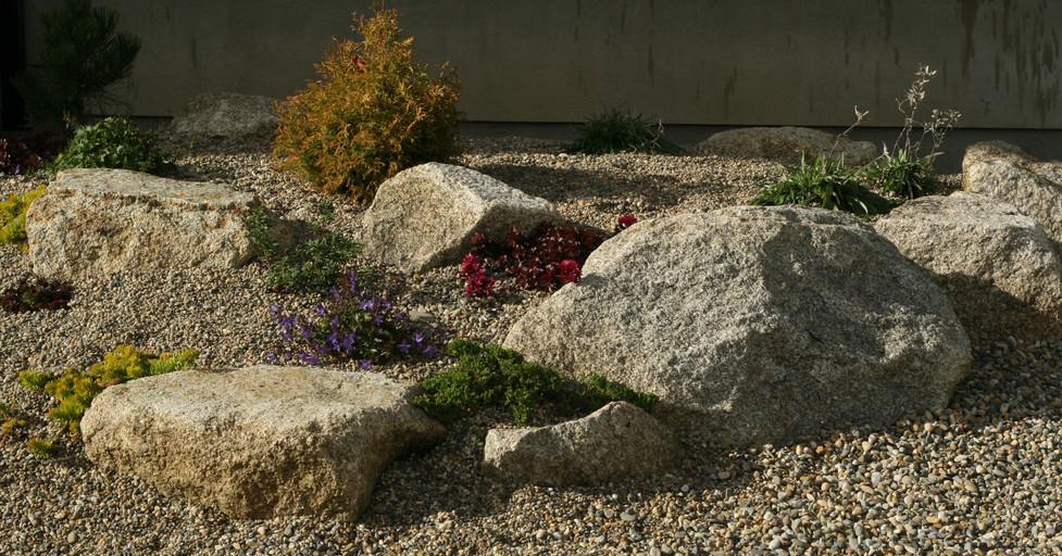 Rockery planting