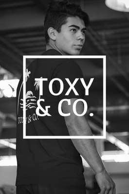 Toxy_Partner.png