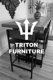 Triton_Partner.png