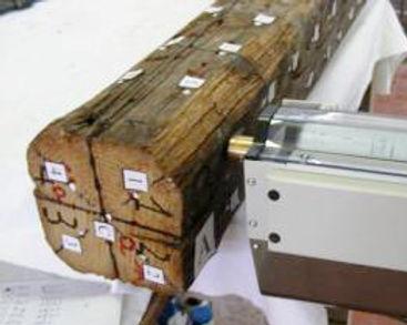Timber-Test.jpg