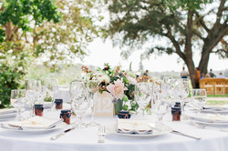 napa winery bay area wedding photographer-2