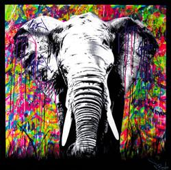 elehpant painting