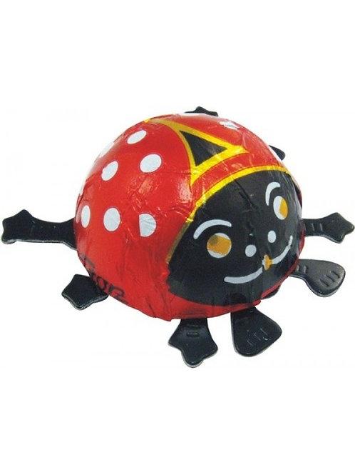 Chocolate Ladybug