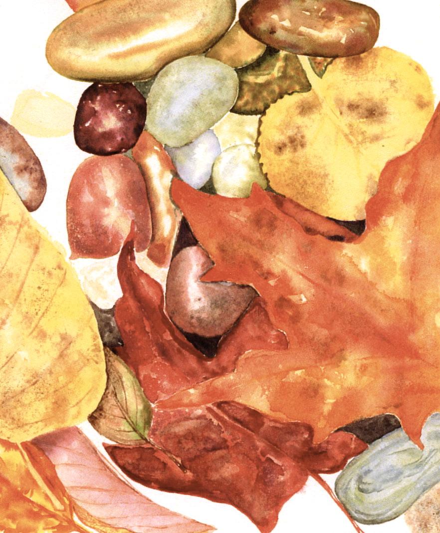Stones&leavesuntitled-