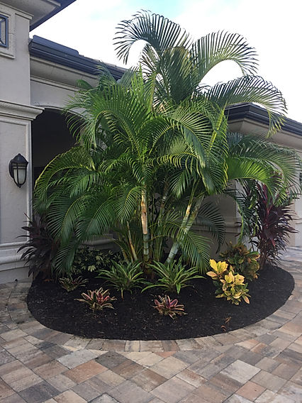 Evergreen Irrigation & Landscaping | Lee County | Full Service Landscape Company - Demolition, Clean-Up, Design, Renovations & Many More