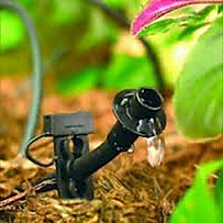 Evergreen Outdoor Services   Cape Coral, FL   Irrigation Systems - Design & Installation - Sprinkler Systems