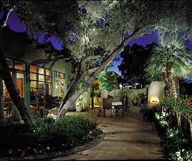 Landscape lighting backyard.jpg