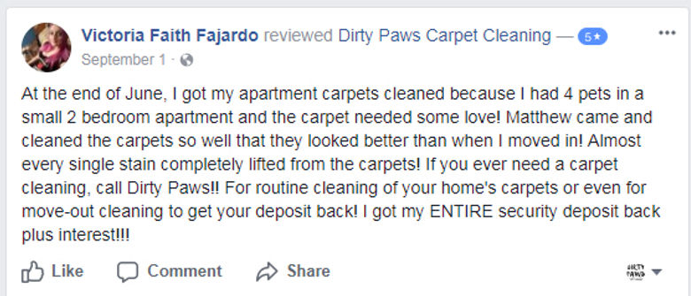 Dirty Paws Carpet Cleaning Bismarck Nd
