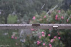 _Potrà piovere lì fuori, sulla terra, sulla strada, sulle cose