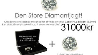 """Vinderen af """"Den Store Diamantjagt"""""""