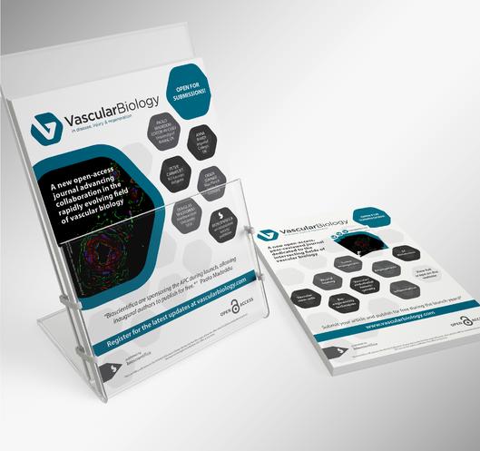 Leaflet design freelance designer-01.png