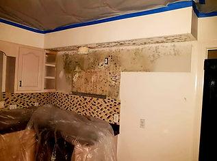 mold damage kitchen bathroom remodel testing assessment sarasota florida inspection