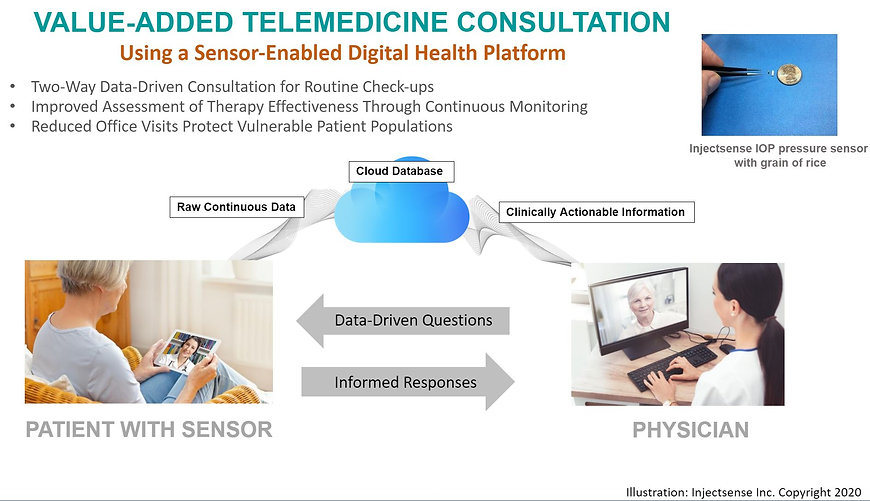 Telehealth diagram.JPG