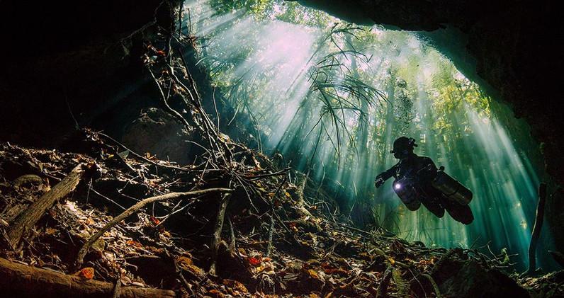 mexico-mangroves-cenote-diving_86767_990