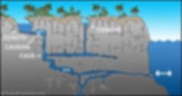 cenote profile.jpg