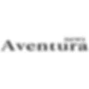 aventura news logo.png