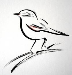w,warbler2