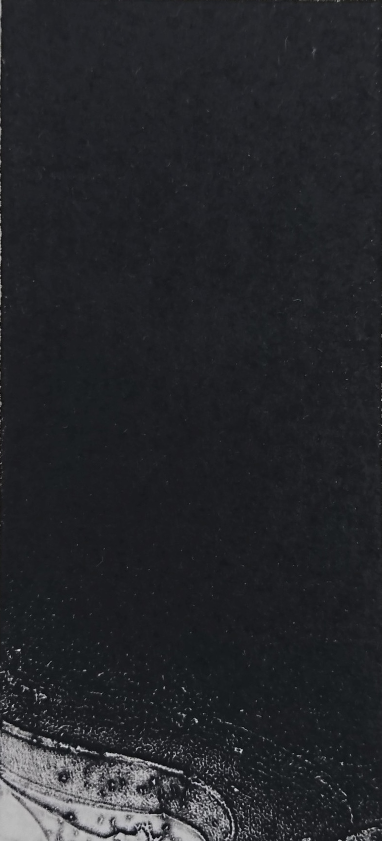 No.45 14×6,5 2018