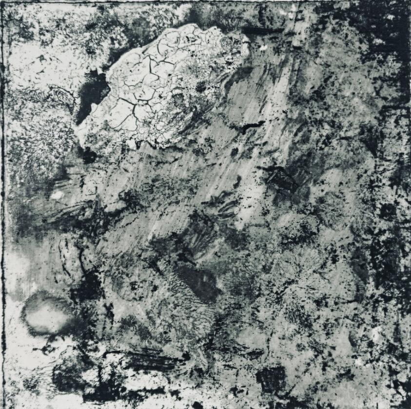 No.24 15×15 2015