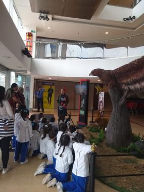 Visita Animales en Extinción