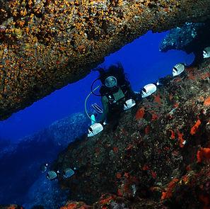 diving lampedusa