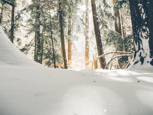 Wintertime Yoga