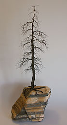 Wire Tree 631 Pine 1.JPG