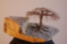 Wire Tree 397 Acacia 4.JPG