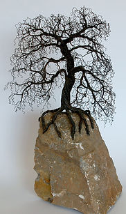 Headings Wire Tree 510 Corkscrew Willow