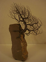 Wire Tree 542 Juniper 114.JPG
