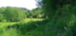 06 Chemin plat.jpg
