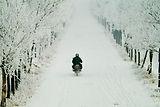 mc_snow.jpg
