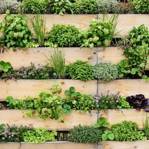 Dicas para planear jardins em pequenos sítios.