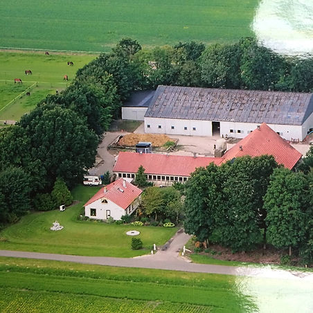 Paarden/pony  pension manege