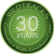 WildtracksBelize.jpg