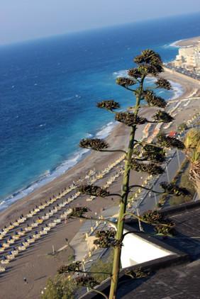 Городские пляжи_09.jpg