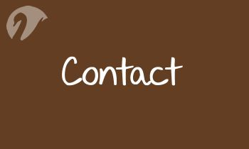 Spinner Contact