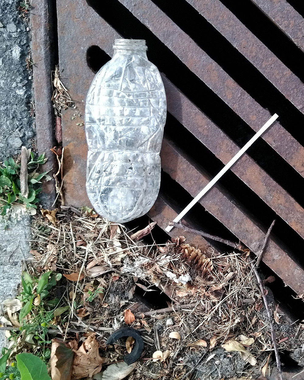 littered plastic bottle and straw