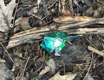 littered green wrapper