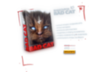 catsale.png