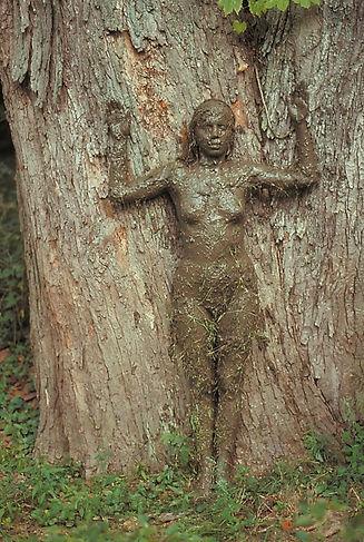 ana-mendieta_tree-of-life_1976_aware_wom