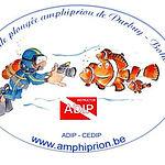 Logo_plongée.jpg