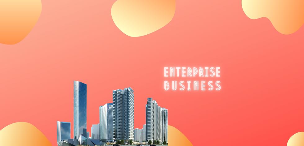 Business Enterprise.png