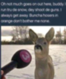 Deer%20reporter_edited.jpg