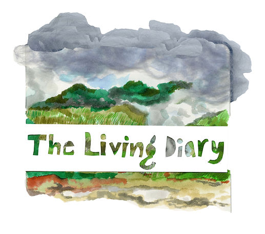 Living Diary.jpg