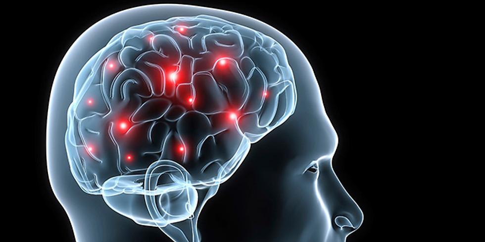 אפילפסיה במוקד העניין