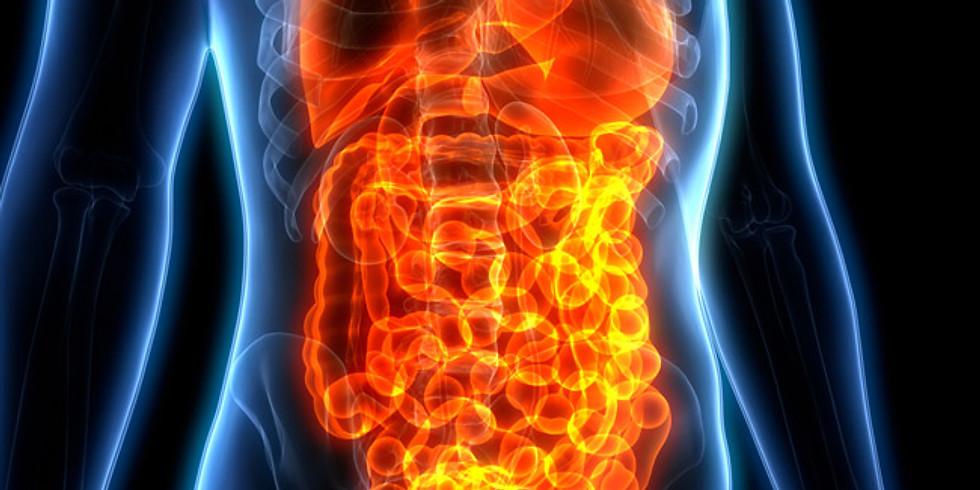 עדכון ידע לאחים ואחיות בנושא מחלות מעי דלקתיות- IBD